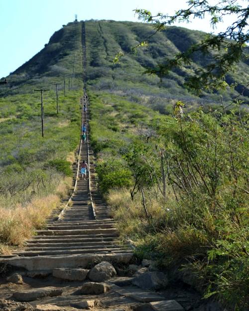 Hawaii _0552_tfb-2013-03-08